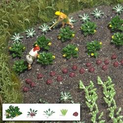 1222 Овощи и салаты - фото 13561