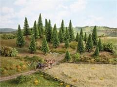 26925 Деревья Ели серебристые 5-14см (10шт)