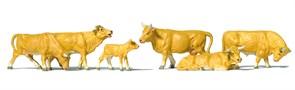10147 Коровы светло-коричневые
