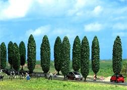 6229 Тополь (10) деревья
