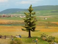 21829 Ель деревья 12см