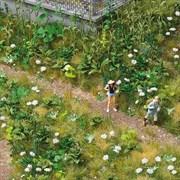 1227 Комплект дикорастущих растений