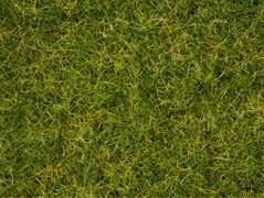 07076 Трава 2,5-6мм 100г летняя
