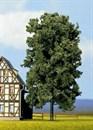 21800 Каштан деревья 19см